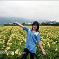 2015-05-嘉德萱草花田(吉安稻香金針花海)34.jpg