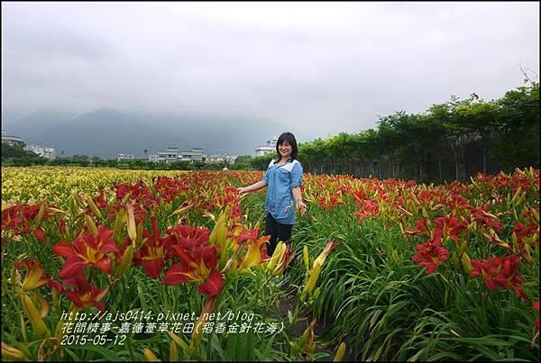 2015-05-嘉德萱草花田(吉安稻香金針花海)36.jpg