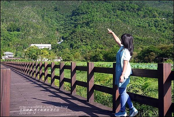 2015-05-馬太鞍濕地荷花池11.jpg