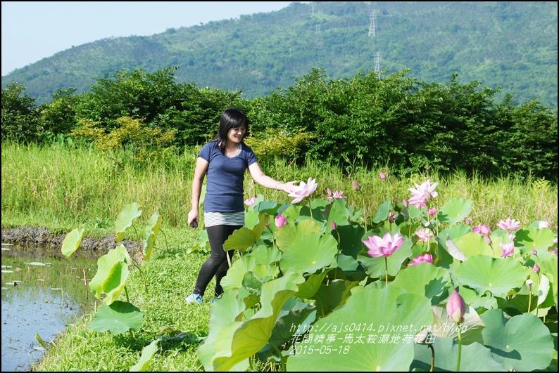 2015-05-馬太鞍濕地荷花池38.jpg