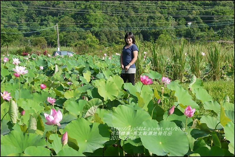 2015-05-馬太鞍濕地荷花池35.jpg