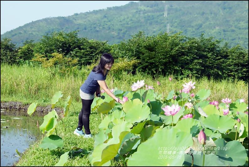 2015-05-馬太鞍濕地荷花池34.jpg