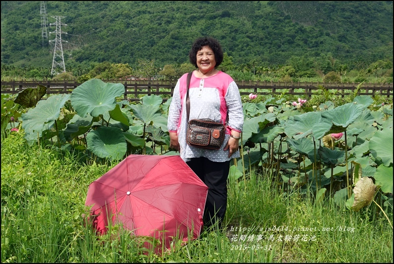 2015-06-馬太鞍荷花池2.jpg