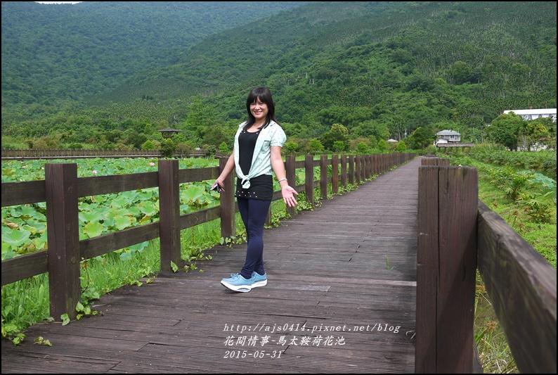2015-06-馬太鞍荷花池3.jpg