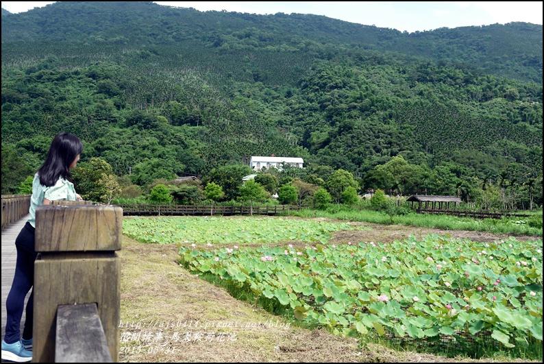 2015-06-馬太鞍荷花池12.jpg
