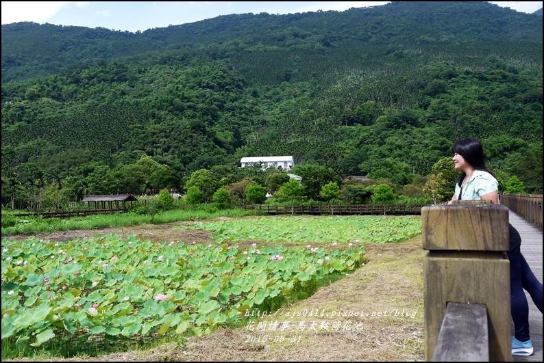 2015-06-馬太鞍荷花池13.jpg