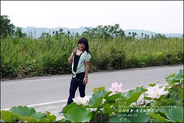 2015-06-馬太鞍荷花池23.jpg