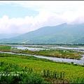 2015-06-高寮河堤(阿勃勒)1.jpg