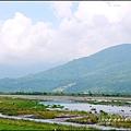 2015-06-高寮河堤(阿勃勒)8.jpg