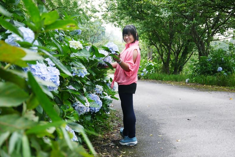 2015-06-赤柯山繡球花10.jpg