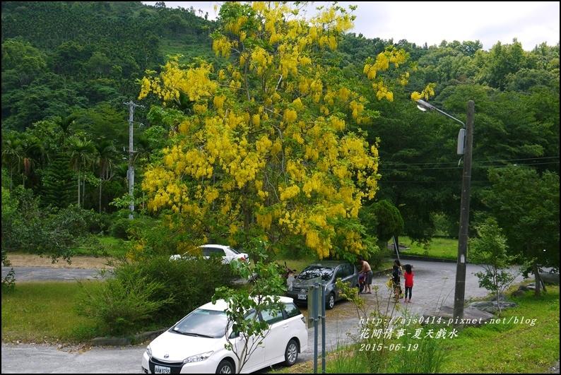 2015-06-夏日戲水7.jpg