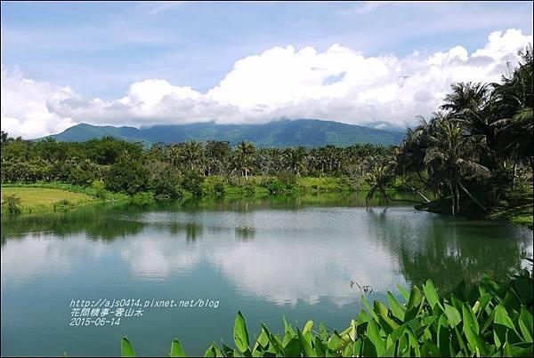 2015-06-雲山水4.jpg