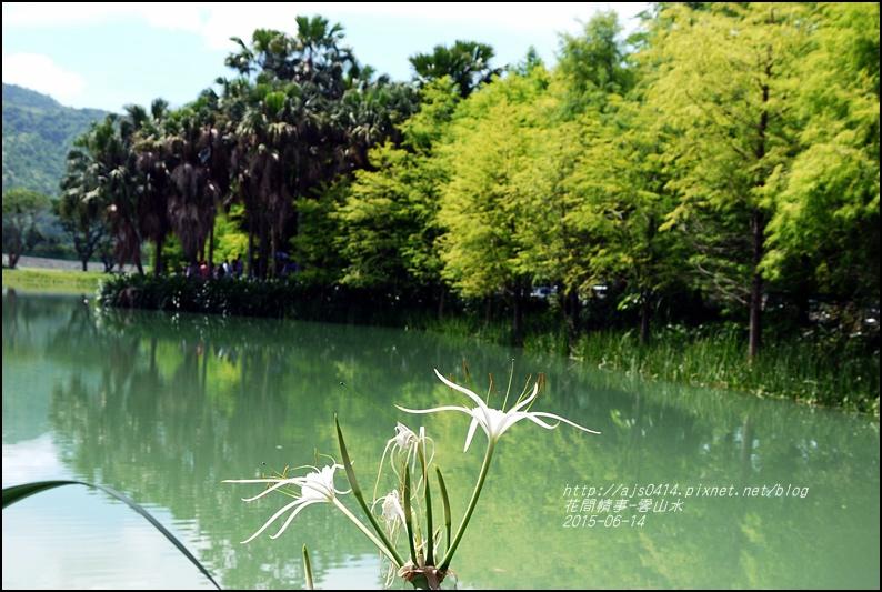 2015-06-雲山水17.jpg