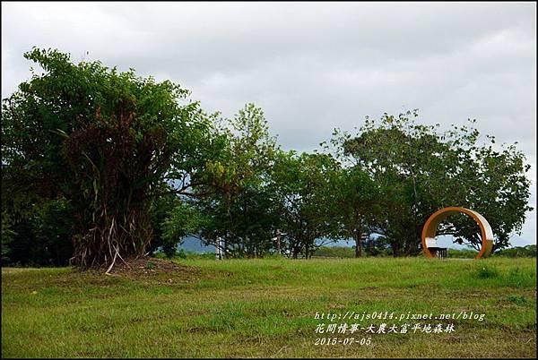 2015-07-大農大富平地森林23.jpg