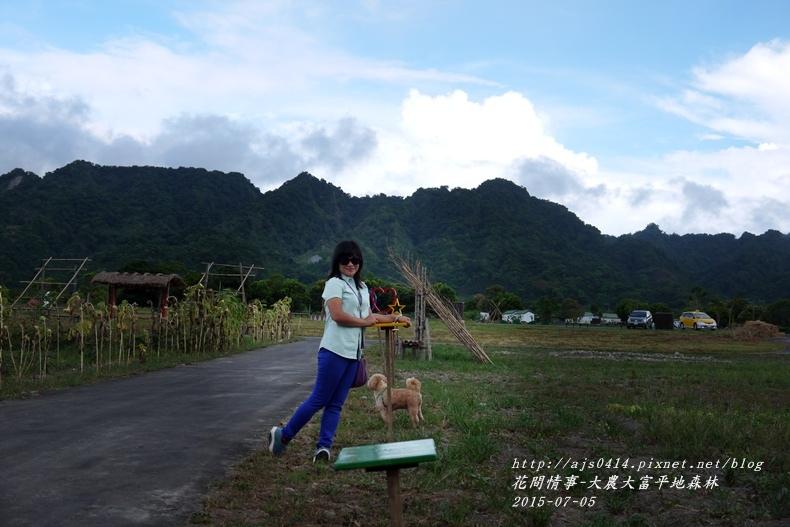 2015-07-大農大富平地森林4.jpg