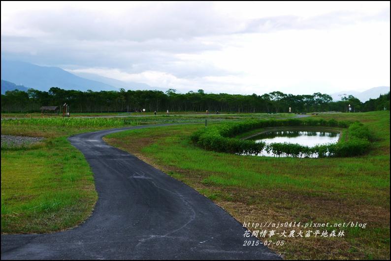 2015-07-大農大富平地森林8.jpg