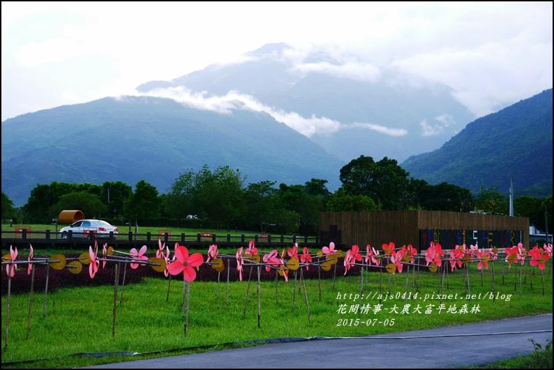 2015-07-大農大富平地森林9.jpg