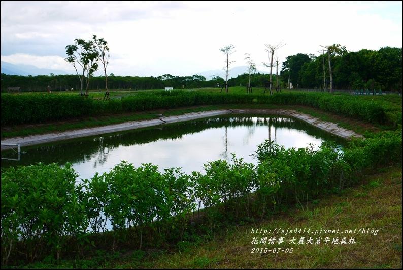 2015-07-大農大富平地森林11.jpg