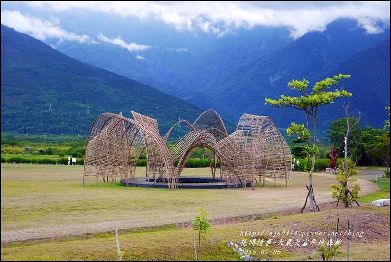 2015-07-大農大富平地森林16.jpg