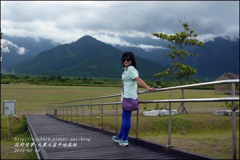 2015-07-大農大富平地森林18.jpg