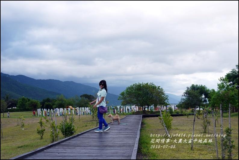 2015-07-大農大富平地森林19.jpg