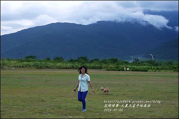 2015-07-大農大富平地森林21.jpg