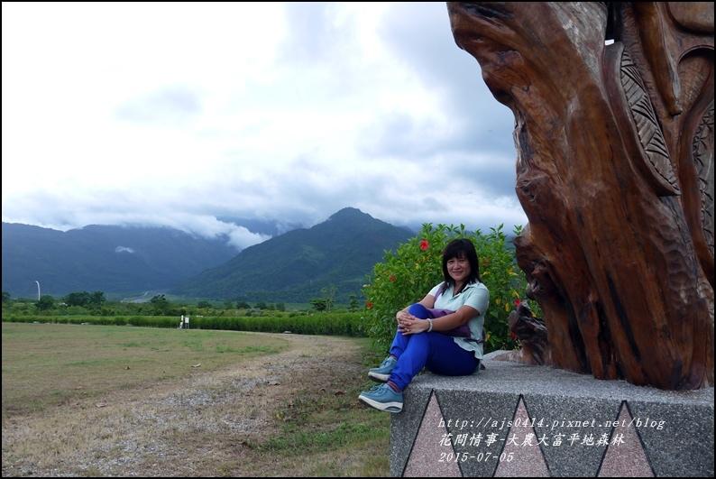 2015-07-大農大富平地森林22.jpg