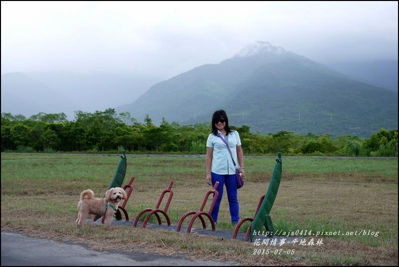2015-07-大農大富平地森林27.jpg