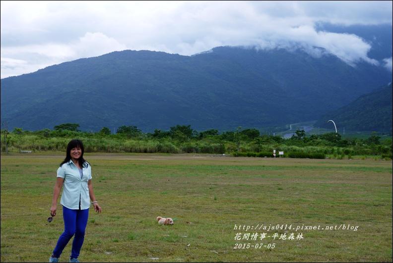 2015-07-大農大富平地森林28.jpg