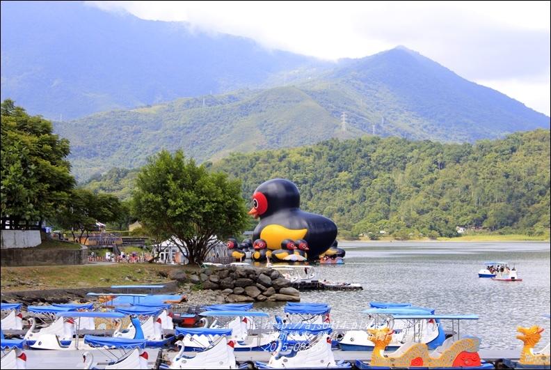 2015-鯉魚潭紅面鴨FUN暑假1.jpg
