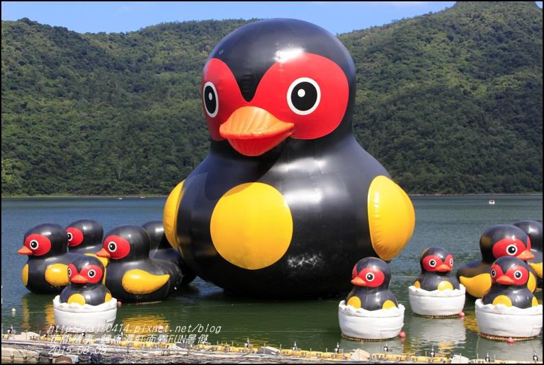 2015-鯉魚潭紅面鴨FUN暑假8.jpg