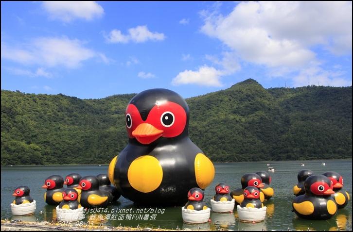 2015-鯉魚潭紅面鴨FUN暑假9.jpg