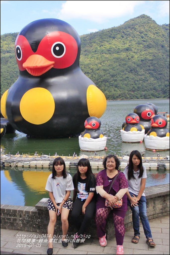2015-鯉魚潭紅面鴨FUN暑假10.jpg