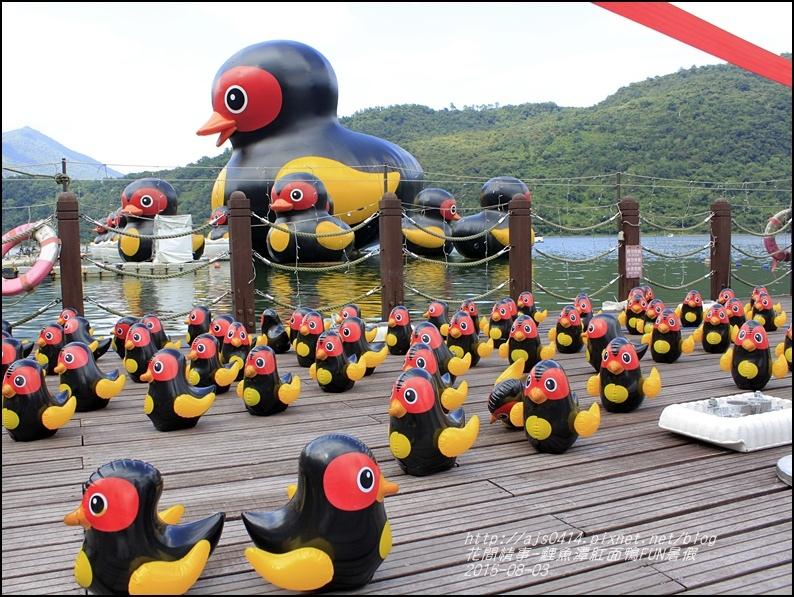 2015-鯉魚潭紅面鴨FUN暑假13.jpg