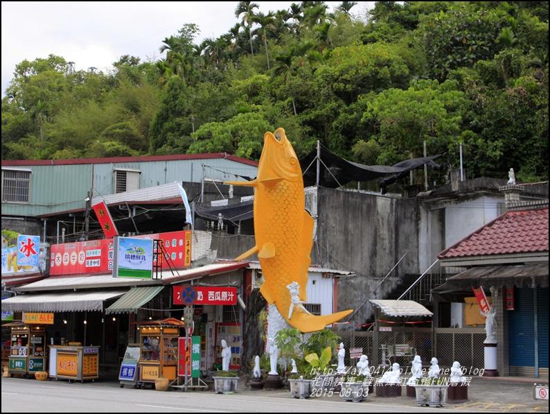 2015-鯉魚潭紅面鴨FUN暑假18.jpg