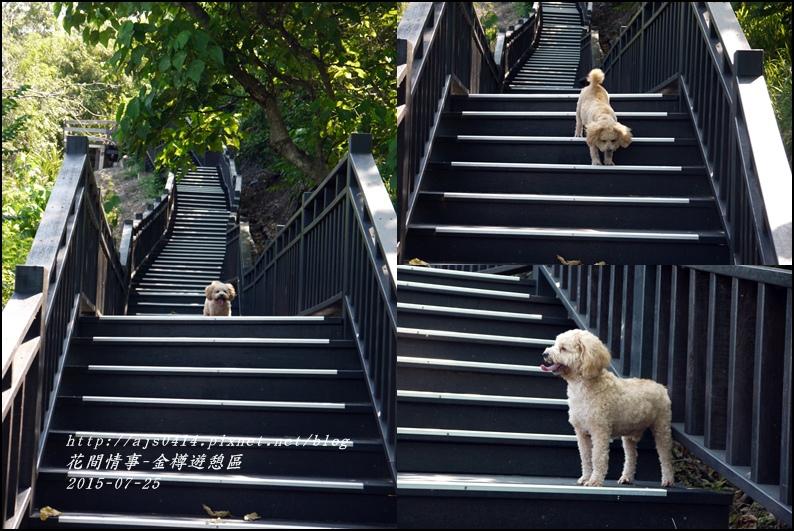 2015-07-金樽遊憩區23.jpg
