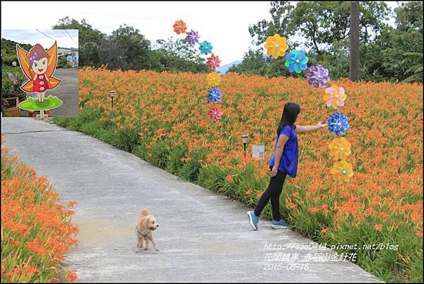 2015-赤柯山金針花季18.jpg