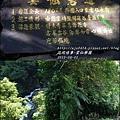 2015-雲仙樂園5.jpg