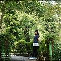 2015-雲仙樂園27.jpg