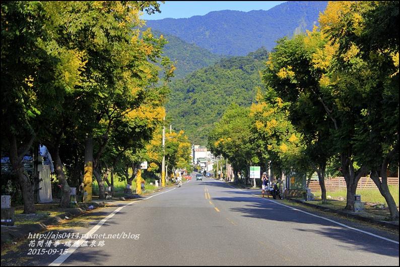 2015-09-溫泉路台灣欒樹10.jpg
