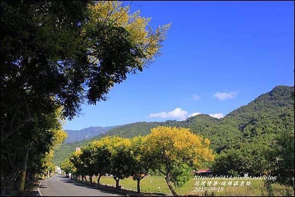 2015-09-溫泉路台灣欒樹11.jpg