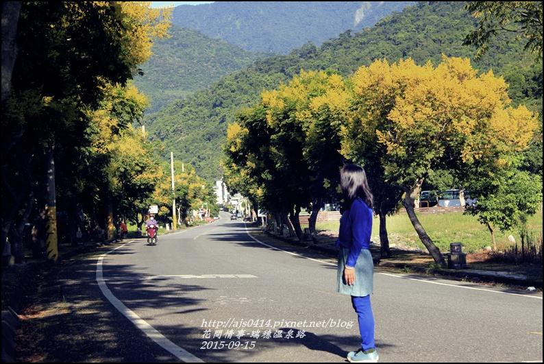 2015-09-溫泉路台灣欒樹15.jpg