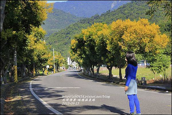 2015-09-溫泉路台灣欒樹16.jpg