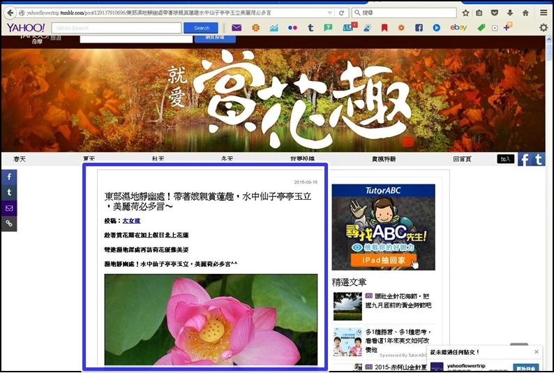 2015-09-15-最愛賞花趣1.JPG