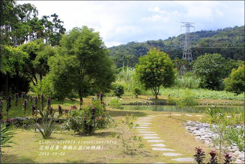 2015-舞鶴社區(田媽媽)6.jpg