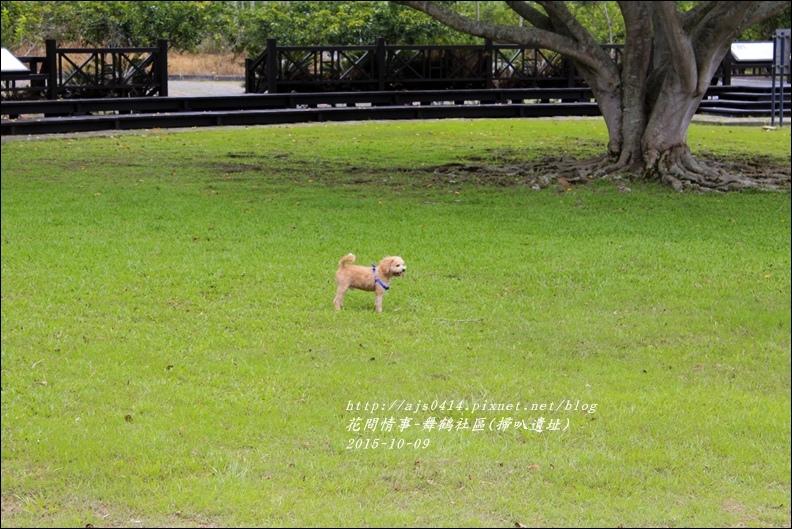 2015-舞鶴社區(掃叭遺址)6.jpg