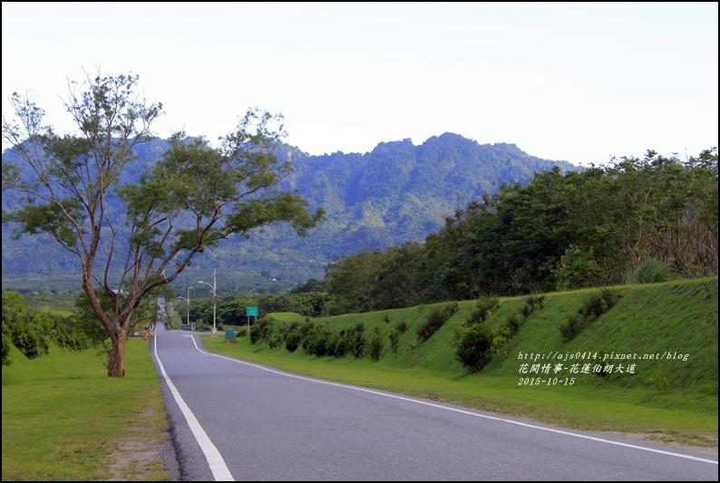 2015-10-花蓮伯朗大道10.jpg
