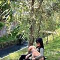 2015-10-富興水圳公園7.jpg
