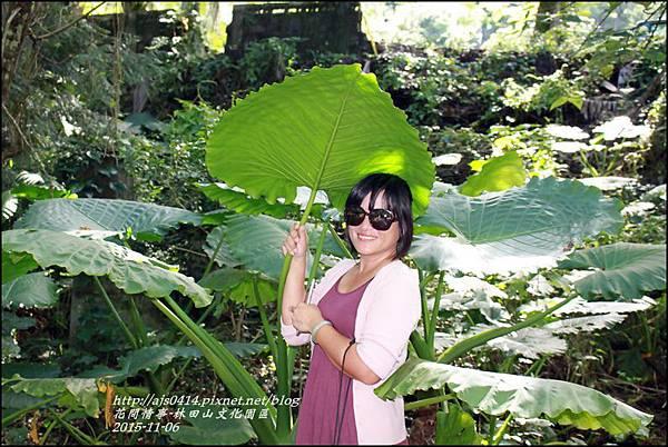 2015-10-林田山文化園區40.jpg
