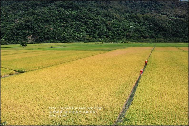 2015-11-南安遊客中心觀景台10.jpg